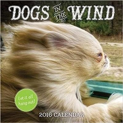 Click to get Dogs in the Wind Wall Calendar 2016